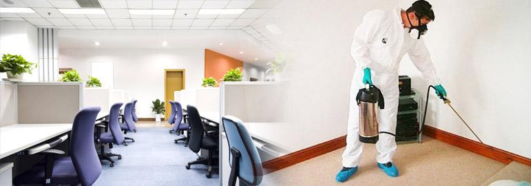 commercial building pest control