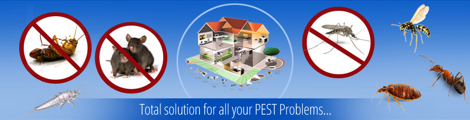 total solution for all your pest problems